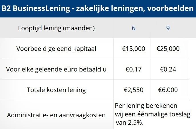 Voorbeeld zakelijke lening